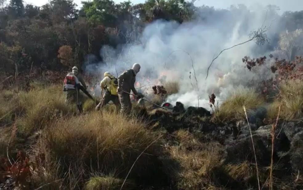 Mais de 70 profissionais atuam no combate às chamas  — Foto: Divulgação/Parque Nacional das Emas