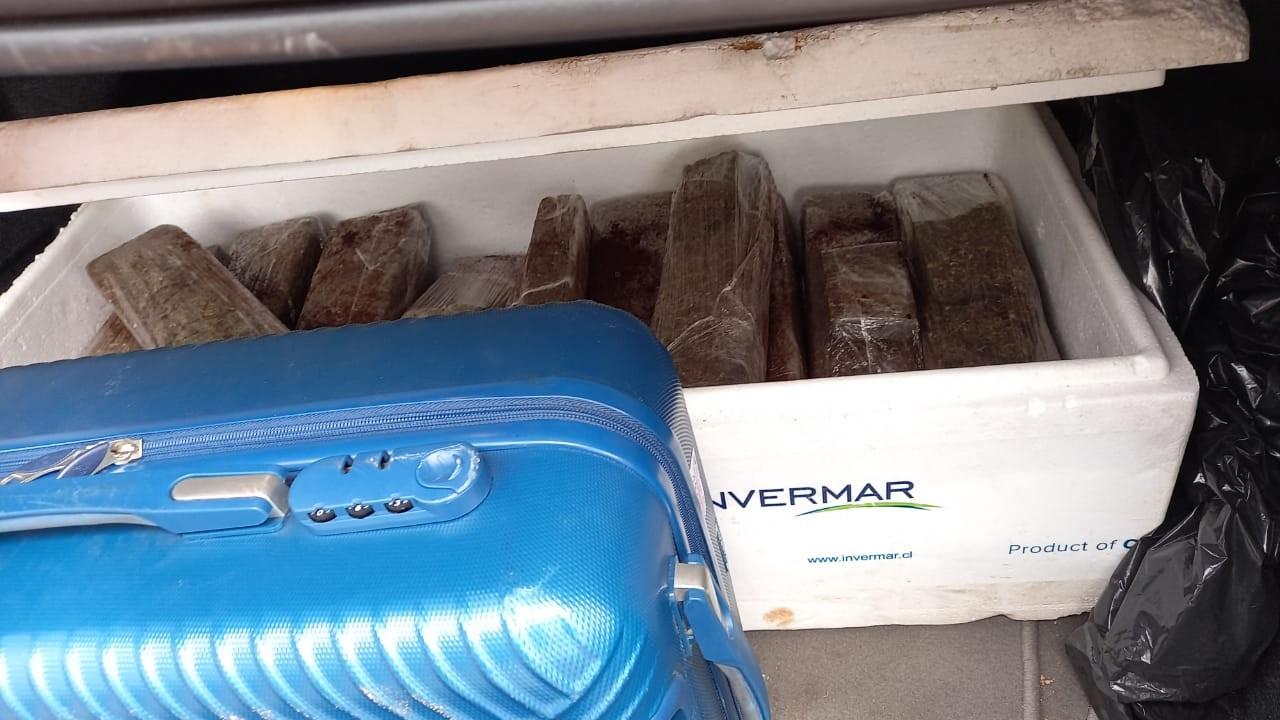 PRF apreende 26kg de maconha em bagageiro de ônibus na BR-135 no MA
