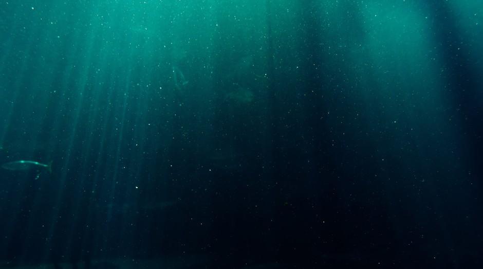 fundo do mar, oceano (Foto: Reprodução/Pexels)