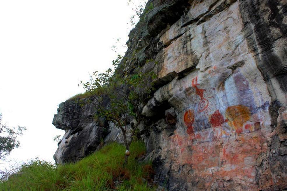 O Pema está inserido na Área de Proteção Ambiental (APA) Paytuna, localizada integralmente em Monte Alegre — Foto: Ascom Ideflor-Bio/Divulgação