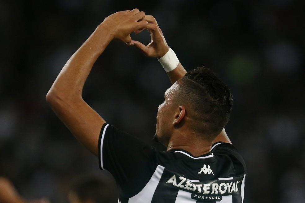Luiz Fernando na comemoração do gol da vitória do Botafogo em cima do Paraná — Foto: Vitor Silva/Botafogo