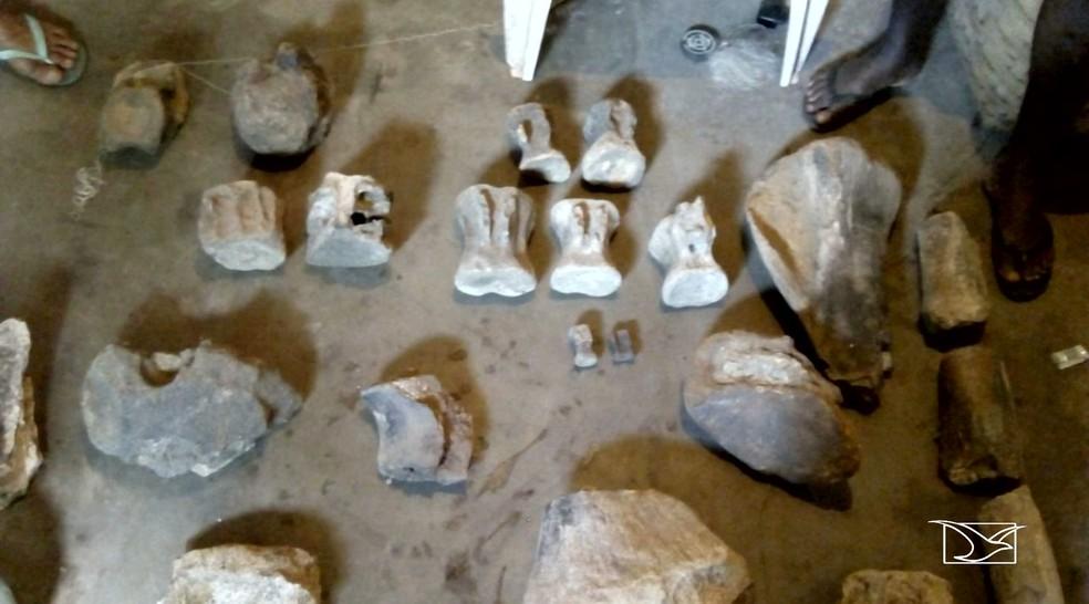 São ossos, vértebras e dentes de carcaradontossauros e outras espécies (Foto: Reprodução/TV Mirante)