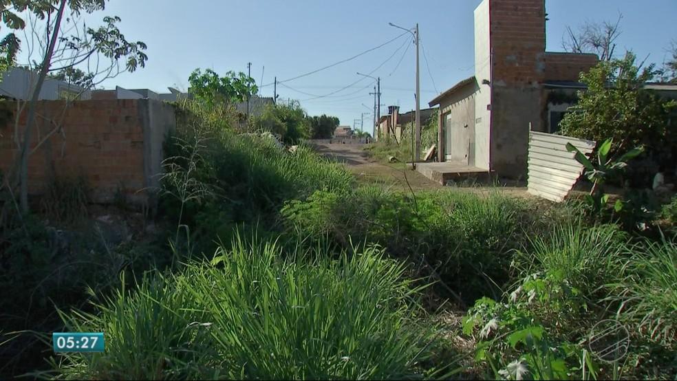 Margens do córrego têm lixo e mato (Foto: TVCA/ Reprodução)
