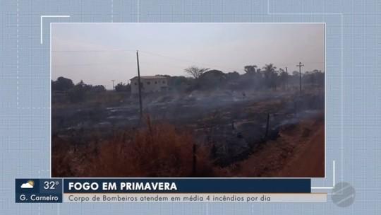 Corpo de Bombeiros tenta apagar fogo às margens da BR-070 em Primavera do Leste