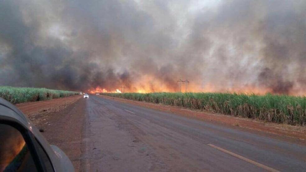 Fogo atingiu canaviais do Triângulo Mineiro neste domingo (20) (Foto: Corpo de Bombeiros/Divulgação)