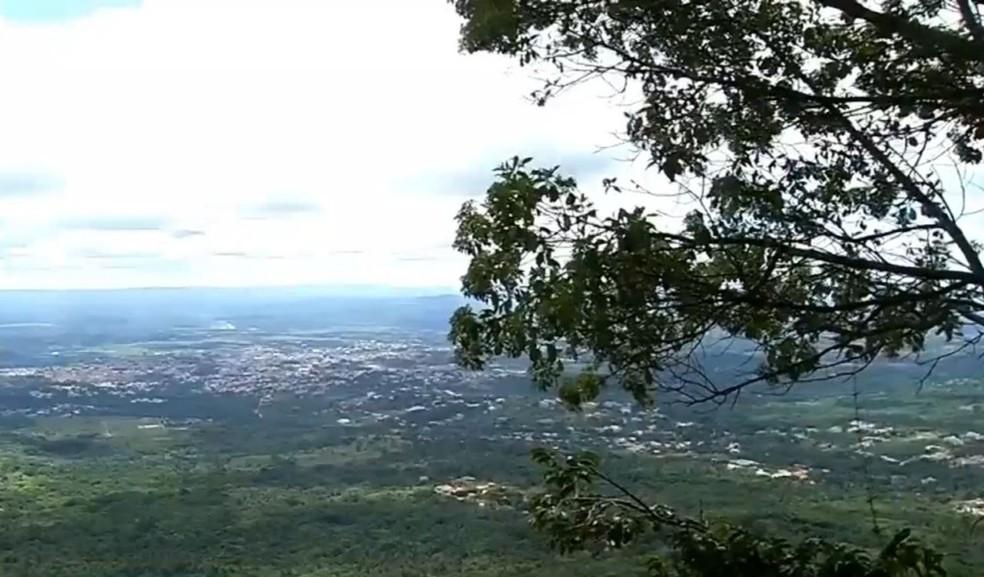 Floresta Nacional do Araripe, no Ceará. — Foto: Reprodução/TV Verdes Mares