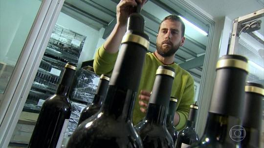 Catalunha é a maior produtora de vinhos da Espanha