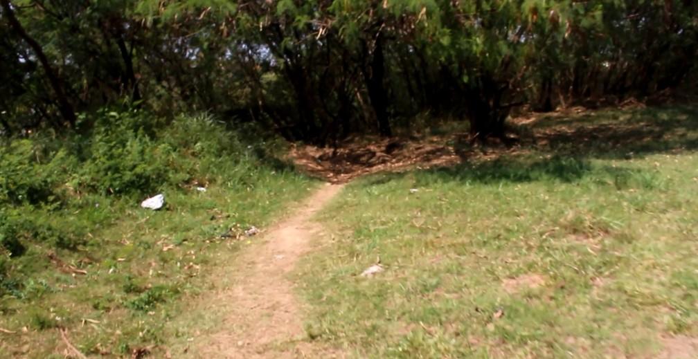 Alguns acampamentos ficam dentro de matagal (Foto: Carlos Dias/G1)