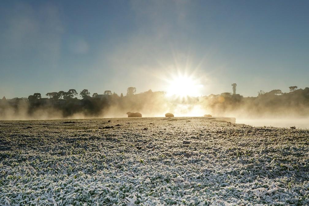 Fotógrafo da Fundação de Ação Social registra capivaras e nascer do sol, no Parque Barigui, no domingo (7) mais frio de 2019 — Foto: Ricardo Marajó/FAS