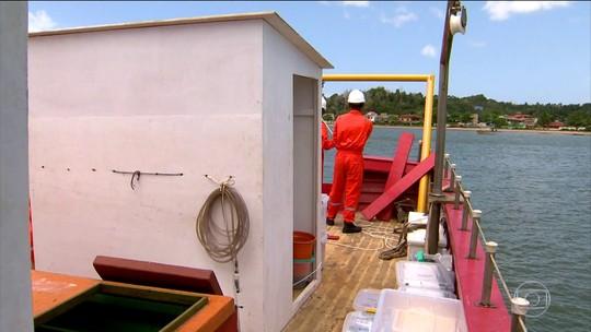 Pesquisadores avaliam danos provocados por rompimento de barragem da Samarco