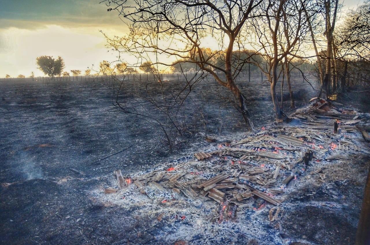 Queimada destrói vegetação no Setor Pioneiro em Vilhena: FOTOS - Notícias - Plantão Diário