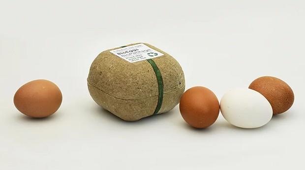 caixa de ovos, plantar, biodegradável, meio ambiente, (Foto: Divulgação)