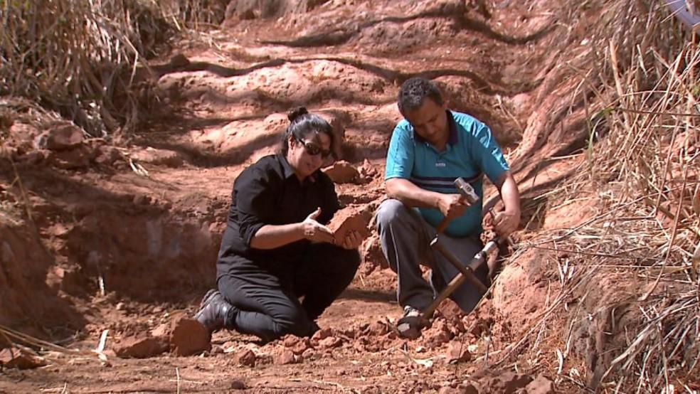 Descoberta de fóssil revelou ponto de escavação na zona rural de Monte Alto, SP (Foto: Reprodução/EPTV)