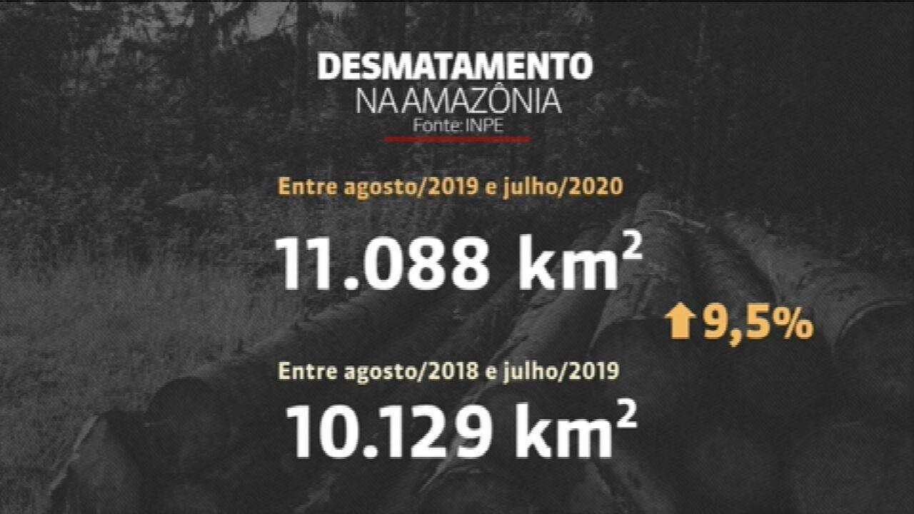 Desmatamento na Amazônia cresce 9,5% em um ano