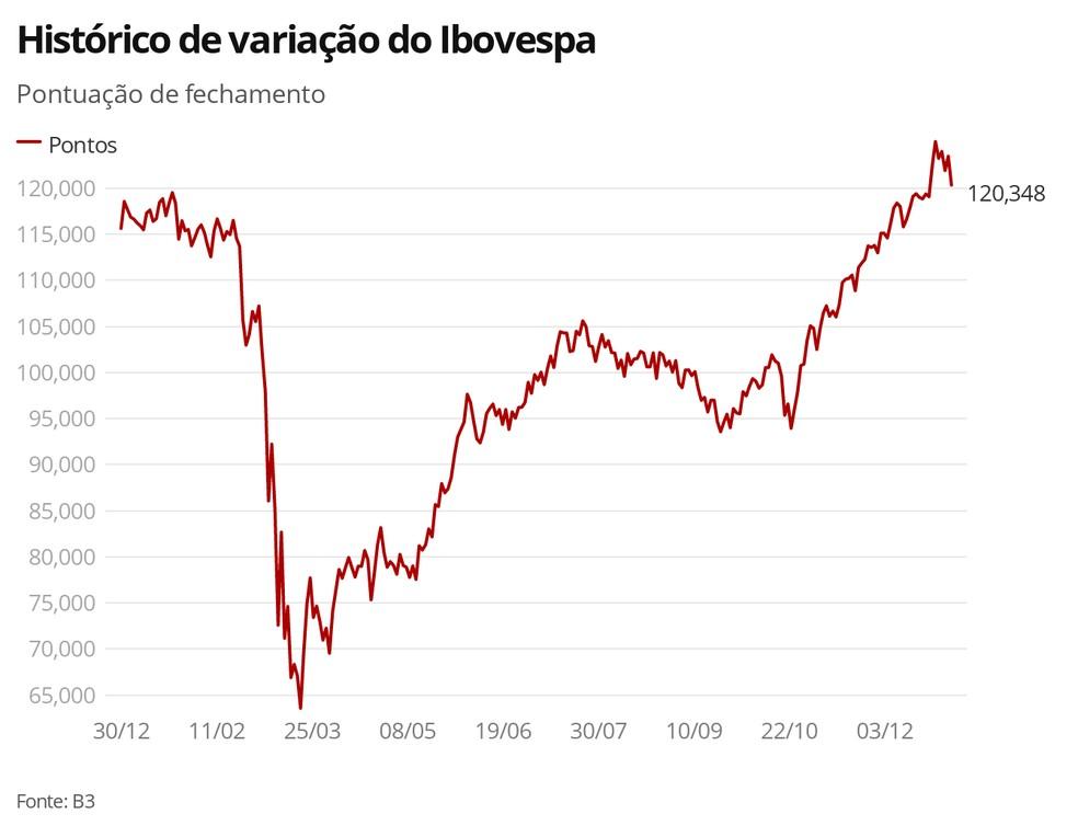 Histórico de variação do Ibovespa — Foto: G1 Economia