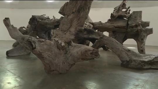 Artista chinês faz sua primeira exposição no Brasil