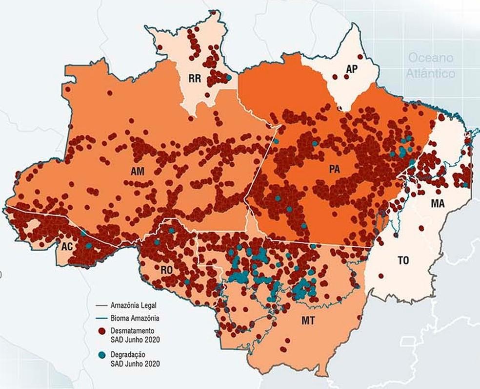 Imazon divulgou balanço sobre desmatamento em junho nesta sexta-feira (17).  — Foto: Reprodução/Imazon