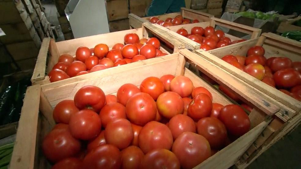 Tomate era vendido a R$ 70 a caixa e agora é vendido a R$ 150 (Foto: Reprodução/ TV Globo)