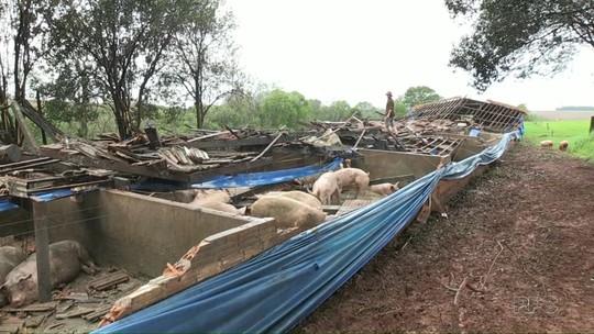 Chuva forte e vendaval causam destruição em São Miguel do Iguaçu