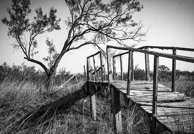 Pinguela, ponte, ponte de madeira, ponte caída (Foto: Pixabay)