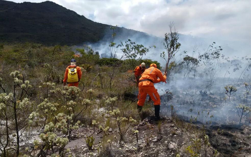 'O país está perdendo rapidamente sua riqueza (florestal)', diz o pesquisador da UFMG Raoni Rajão — Foto: Dviulgação/Corpo de Bombeiros Militares