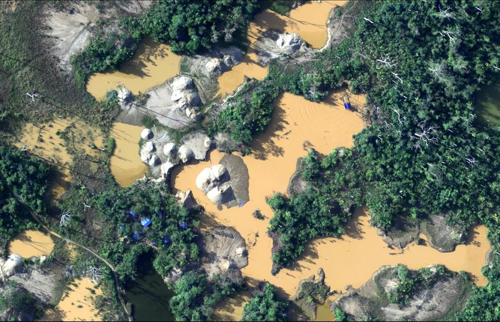 Material será entregue para algumas ONGS e também para órgãos responsáveis de fiscalização (Foto: Ministério da Defesa do Peru/AFP)