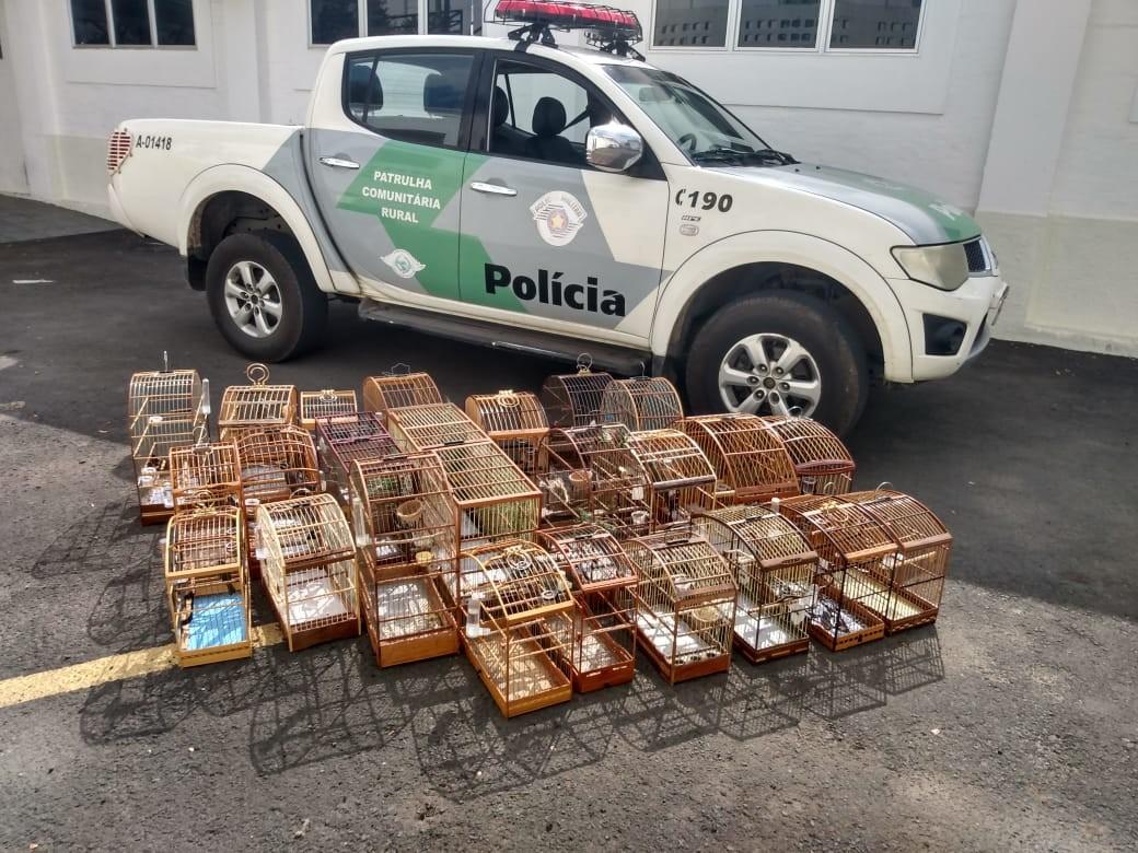Polícia Ambiental apreende 25 pássaros silvestres em Campinas e aplica multas de R$ 12,5 mil