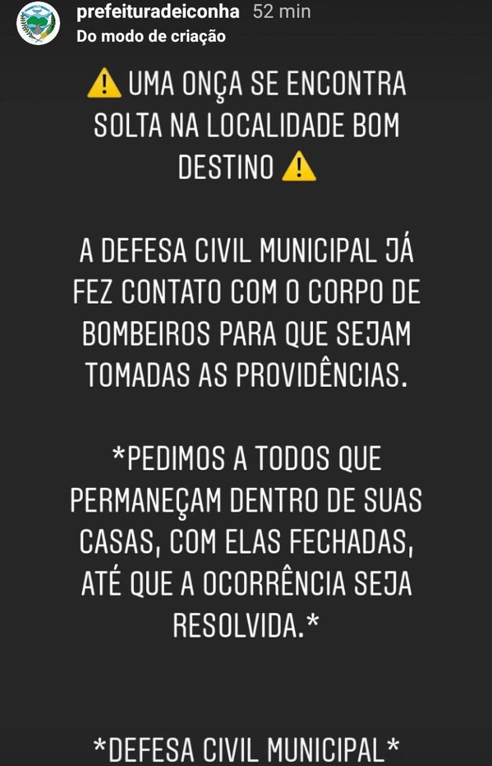 Defesa Civil de Iconha fez aviso sobre onça  — Foto: Reprodução/Instagram