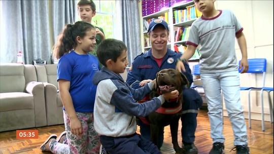 Cão dos bombeiros participa de projeto para estimular leitura de alunos de escola em SC