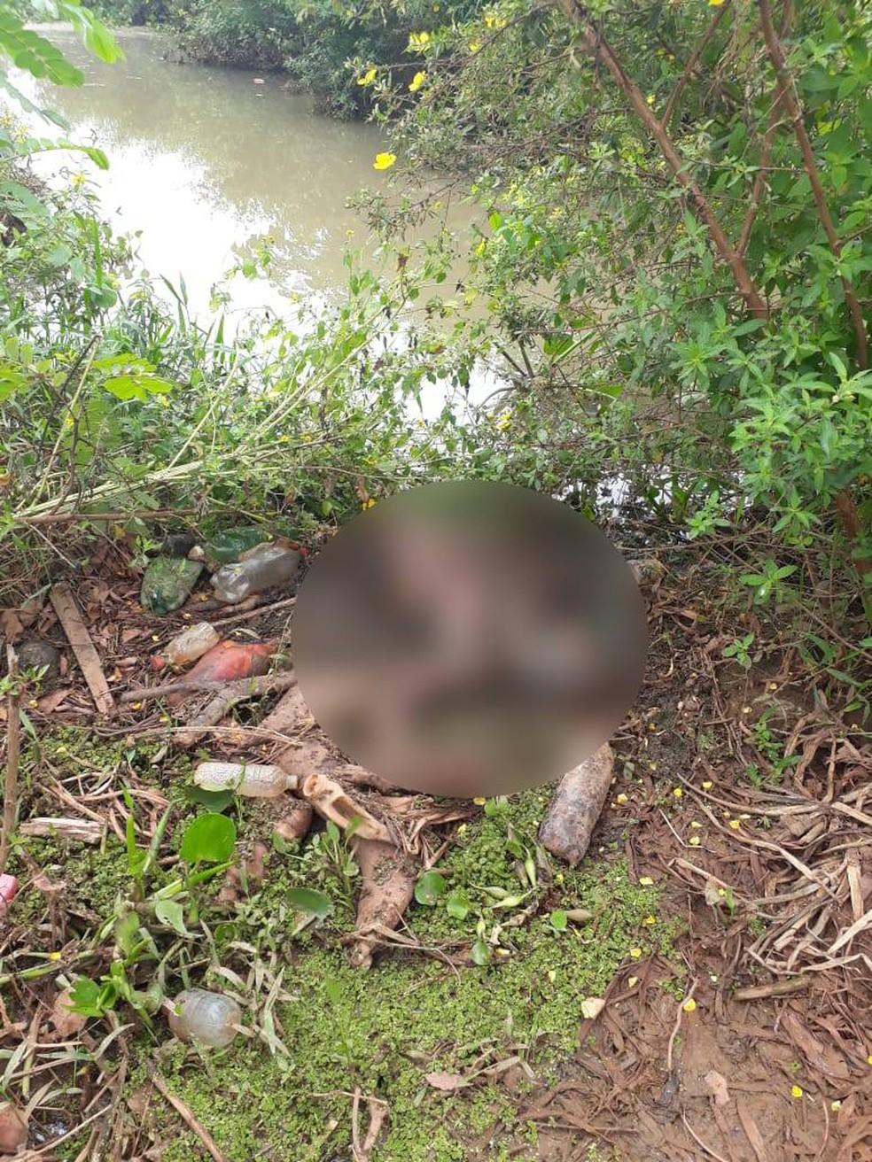 Corpo encontrado às margens do rio, em Cáceres (MT) — Foto: Polícia Civil - MT