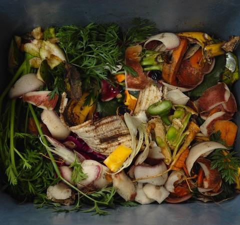 17% de toda a comida disponível para consumo no mundo é desperdiçada