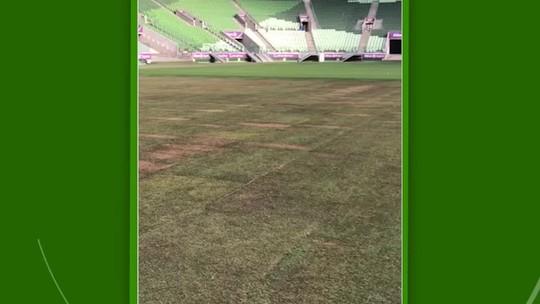 Veja como está o gramado da arena para a partida entre Palmeiras e Fluminense