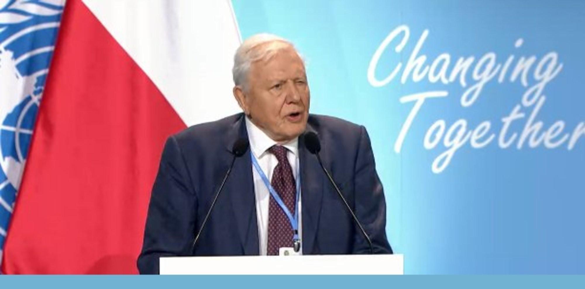 David Attenborough durante seu discurso na abertura da COP24 (Foto: Twitter / UN Climate Chance)
