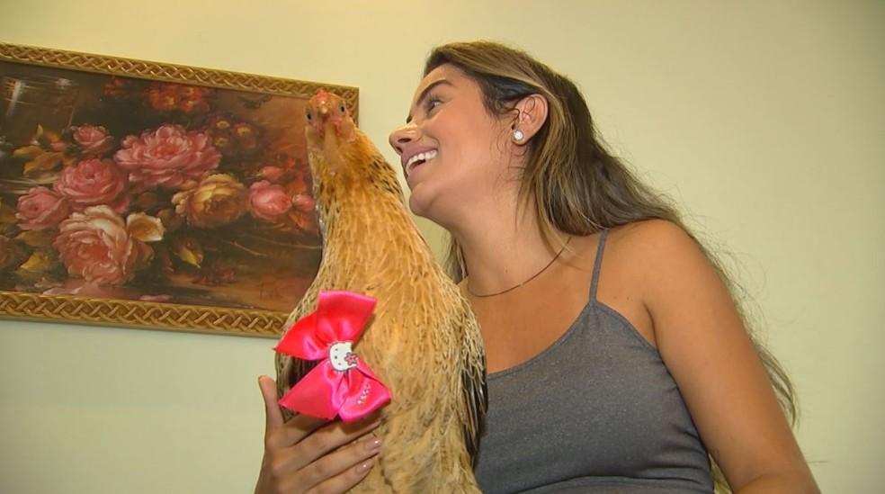 Família de Mirassol (SP) adotou galinha que torna os dias de Arthur mais alegres (Foto: Reprodução/TV TEM)