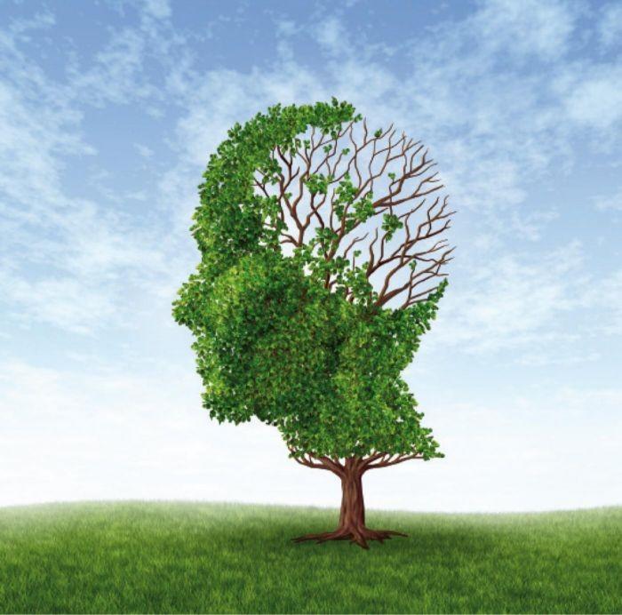 A perda de memória é um dos sintomas do Alzheimer