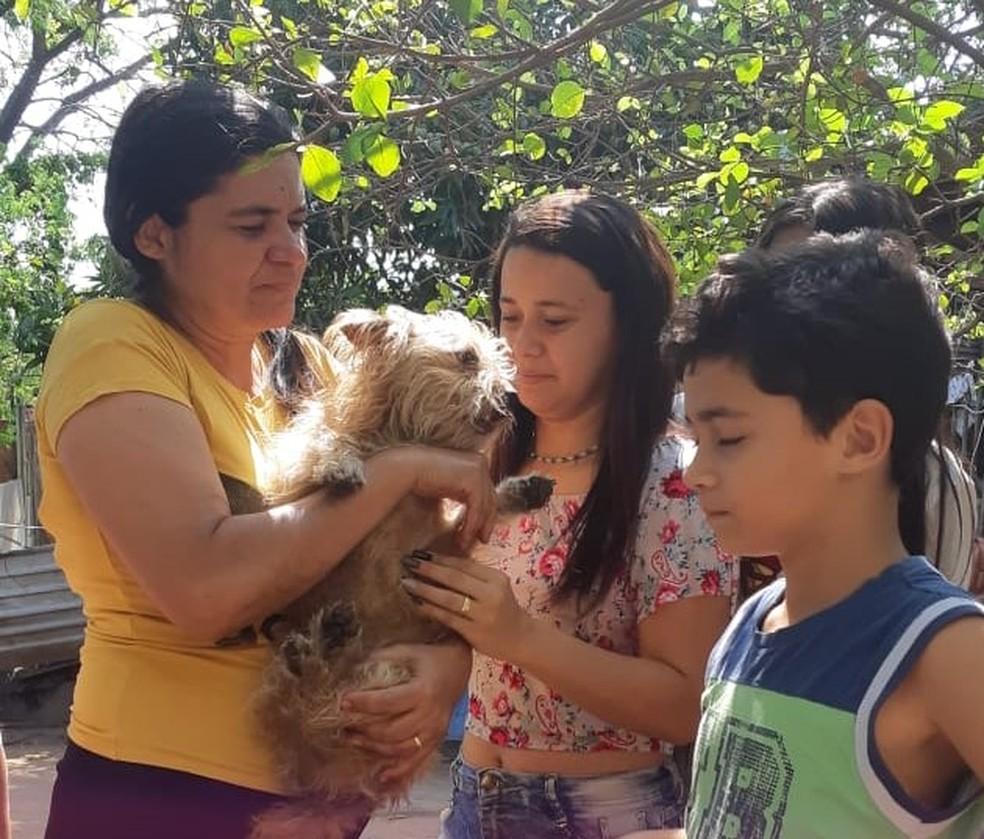 Cãozinho foi devolvido para seus donos, sem ferimentos — Foto: Corpo de Bombeiros/Divulgação