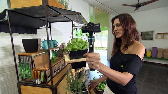 Clube de assinatura ajuda quem planta dentro de casa