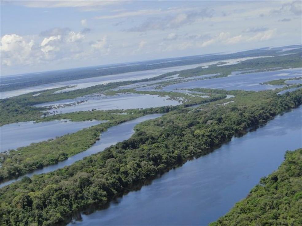 Vista aérea de Anavilhanas, no Rio Negro — Foto: Rede Globo