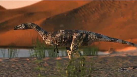 Pesquisadores localizam fóssil de dinossauro no oeste do Paraná