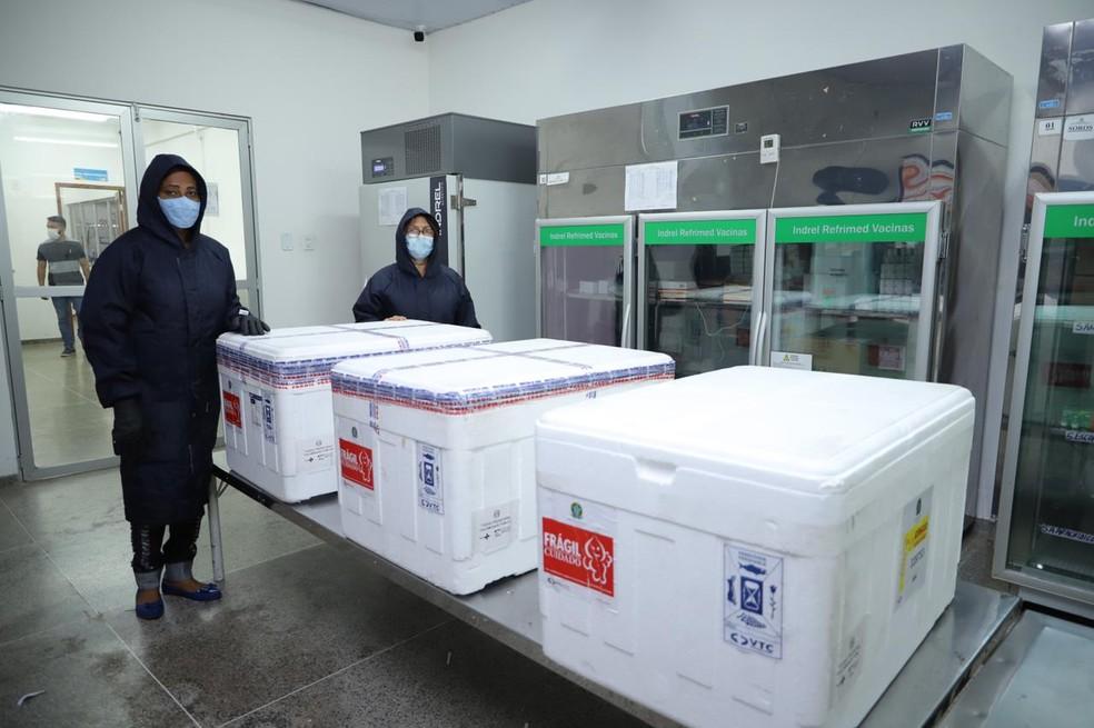 Doses da vacina de Oxford/AstraZeneca chegam à Rede de Frio do Estado do Maranhão, neste domingo (24). — Foto: Juliany Galvão/Governo do Maranhão