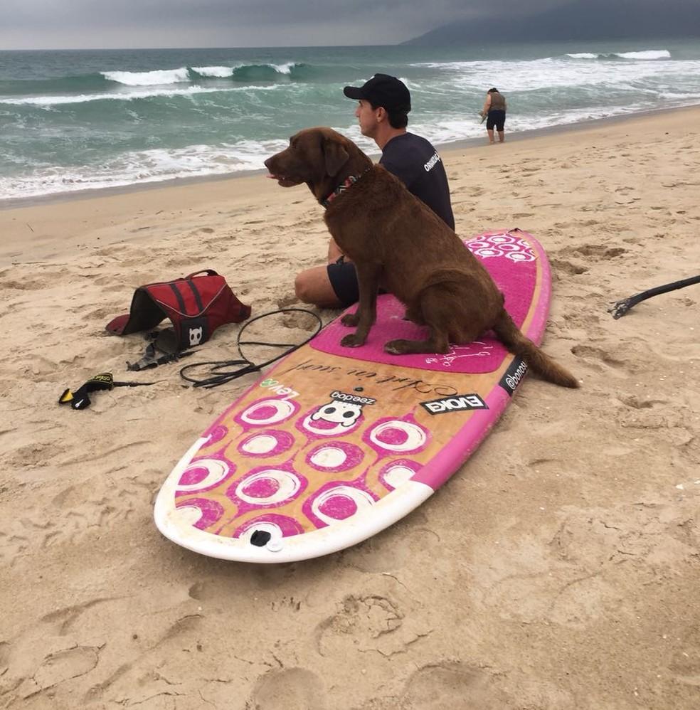 Bono aproveitou a ida a Florianópolis para surfar (Foto: Alessandra Flores/NSC TV)