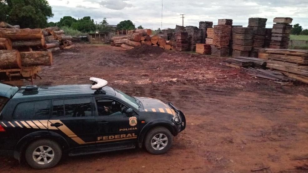 Polícia Federal faz Operação Madeira Nativa em Feliz Natal (MT) — Foto: Polícia Federal de Mato Grosso/Assessoria