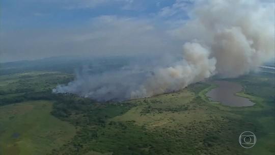 Repercussão faz Bolsonaro mudar tom de discurso sobre Amazônia