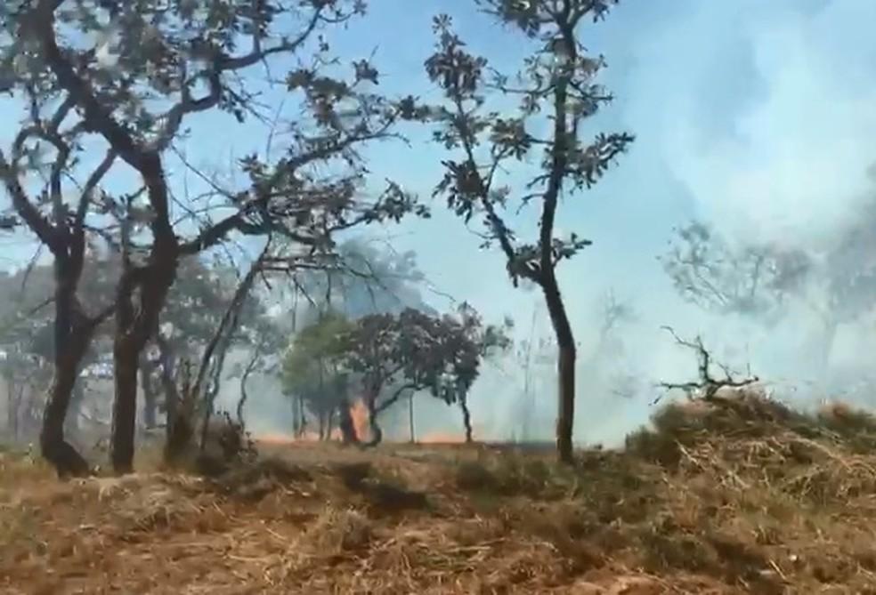 Aulas são suspensas em campus da UnB por conta de incêndio florestal — Foto: Arquivo pessoal