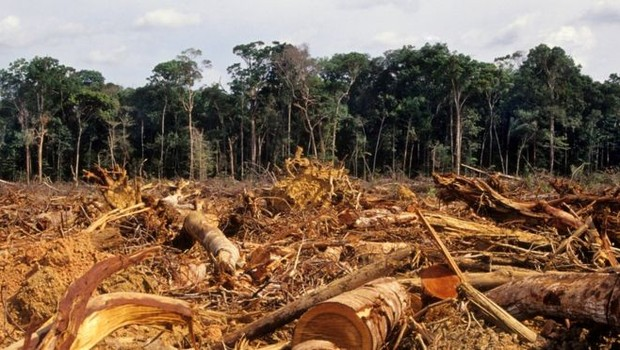 Desmatamento da Amazônia, em foto de 2007 (Foto: Getty Images via BBC News)