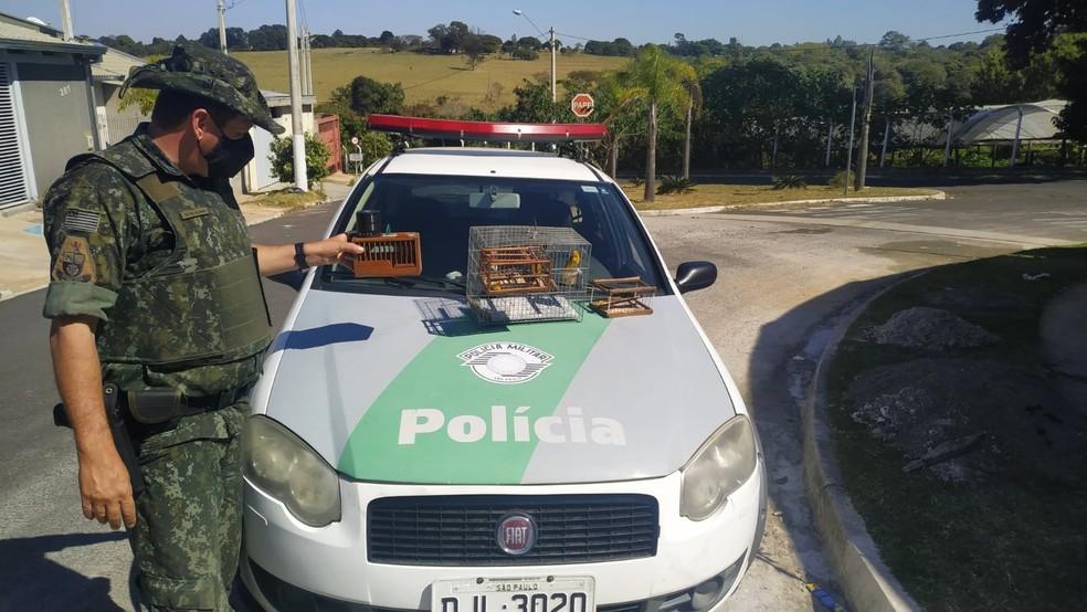 Morador do Bairro Maracá II foi multado em R$ 15 mil por manter aves em gaiolas sem autorização — Foto: Polícia Ambiental/Divulgação
