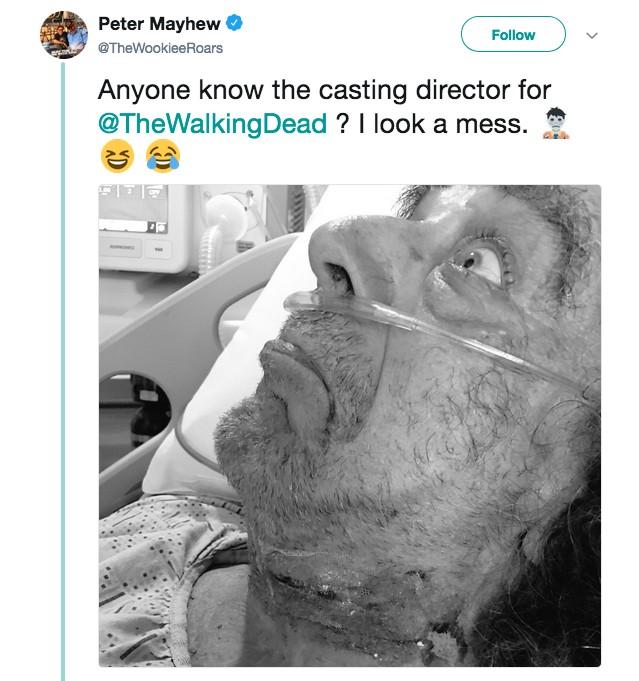 O ator Peter Mayhew brincando e pedindo uma vaga na série The Walking Dead (Foto: Twitter)