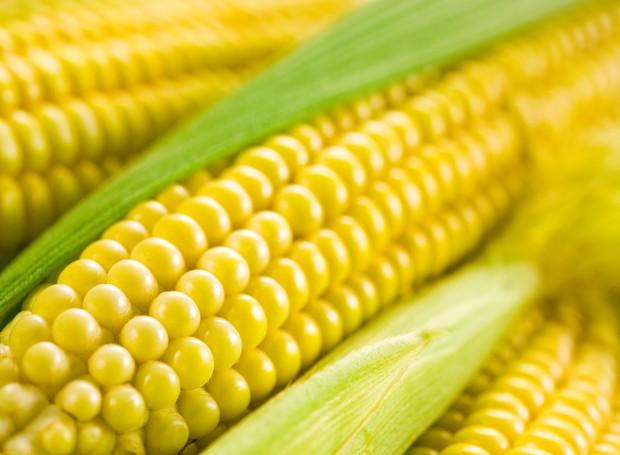 Especial: 18 maneiras de preparar o milho  (Foto: Thinkstock)