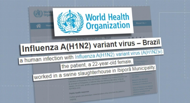 Infecção por variação rara do vírus da gripe é identificada no norte do Paraná, diz OMS