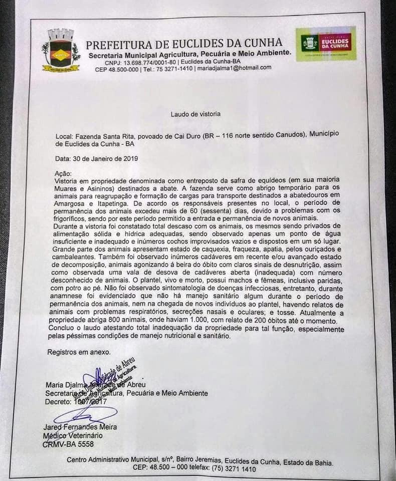 Laudo de vistoria da prefeitura de Euclides da Cunha sobre a morte dos jumentos (Foto: Luciano Pinheiro/Reprodução)